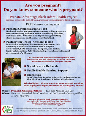 Flyer about 2013 prenatal programs
